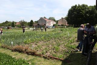 Concours des jardins collectifs 2015