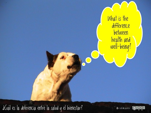 What is the difference between health and well-being? = ¿Cuál es la diferencia entre la salud y el bienestar? #roofdog