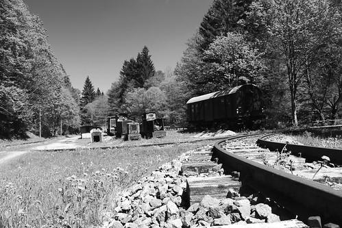 Ein Abstellbahnhof im Wald
