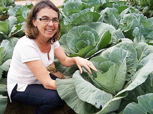 Conforme Sandra Nunes Rodrigues, assistente social da Coptec, somente em Nova Santa Rita, as mulheres estão na linha de frente na produção de hortaliças.jpg