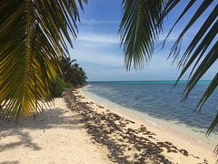Strand im Lighthouse Reef, Belize