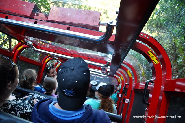 Riding the Scenic Railway at Scenic World