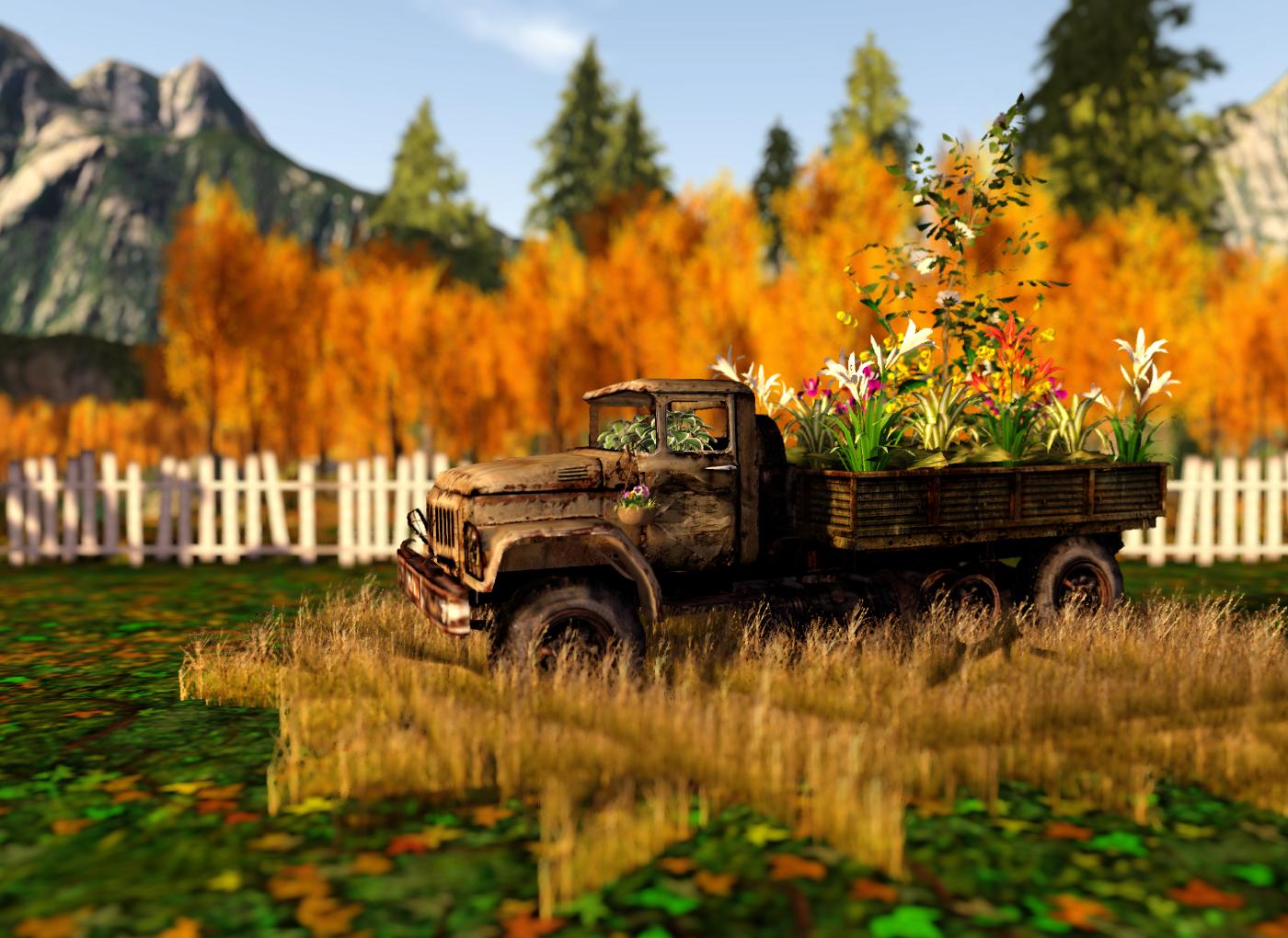 Randy's garden in the autumn