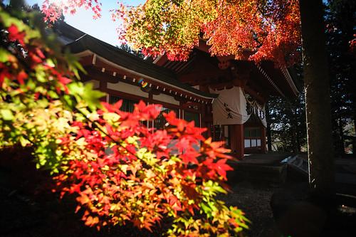 秋乃冨士御室浅間神社