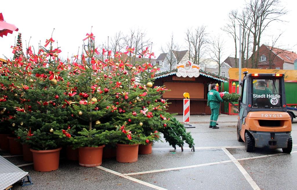 Parkplatz für Weihnachtsbäume