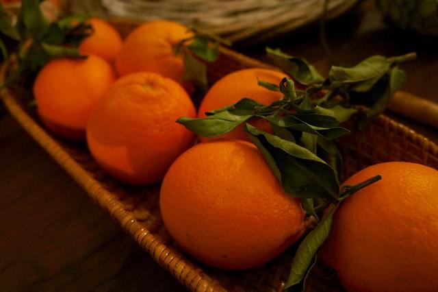 oranges-aranci-italy-cr-brian-dore