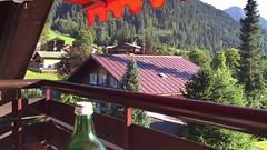 Aussicht vom Gatterhof Balkon