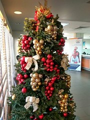 Went to the bank and I saw my first Christmas tree for the season. #warmthofanguilla #excited