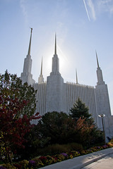 National LDS Temple Grounds  (67)