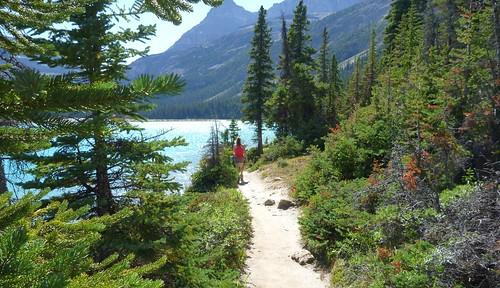 Hiking along Bow Lake