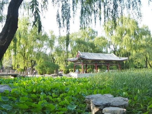 CH-Beijing-Parc Ritan (9)