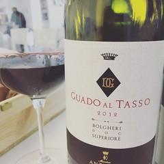 Nel frattempo #vino #wine #bolgheri #visioni