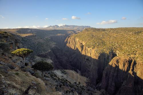 dixam rokeb canyon dragonblood firmhin hut plateau socotra yemen hadhramautgovernorate ye