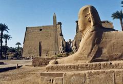 1999.10 EGYPTE - LUXOR - Temple d'Amon