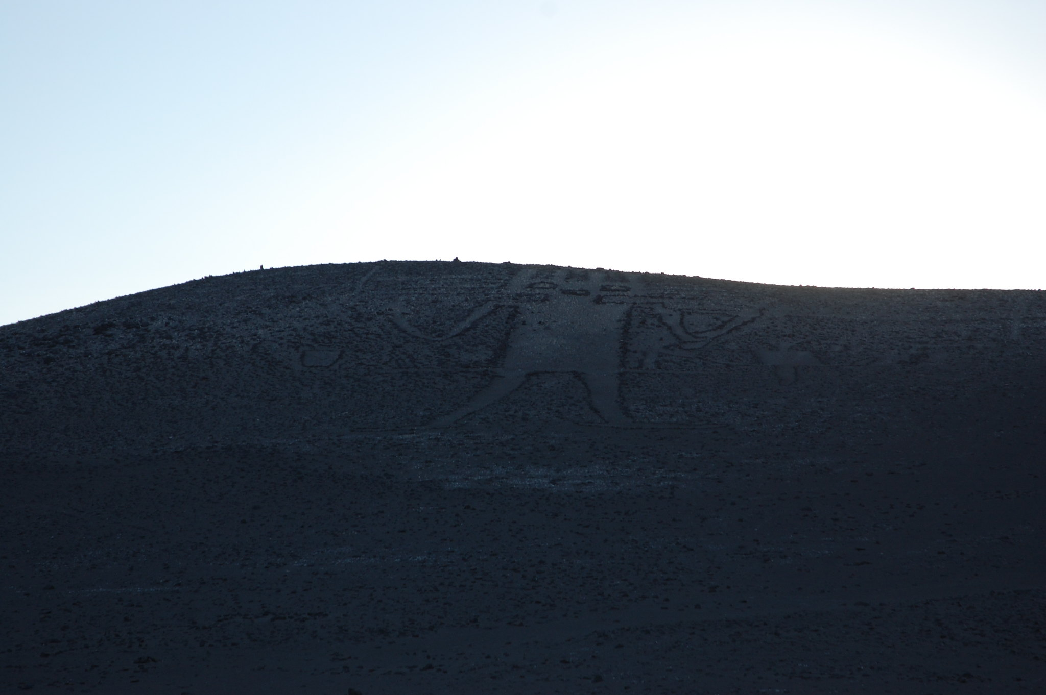 Gigante de Atacama, near Iquique, Tarapacá, Chile