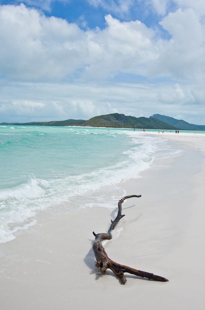 Whitehaven beach to sydney