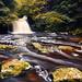Autumn at West Burton Falls by mark_mullen