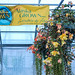 SDWG Chena 2015 - Alaska Grown