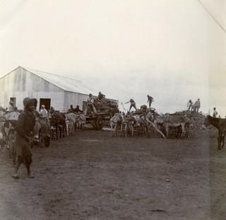 Pietersburg Camp, c.1901.