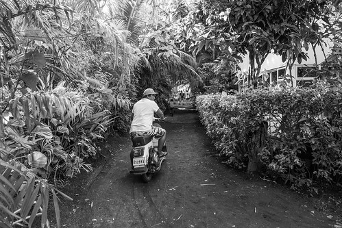 blackandwhite bush vespa noiretblanc scooter jungle moto tahiti pf brousse polynésiefrançaise teahupoo îlesduvent