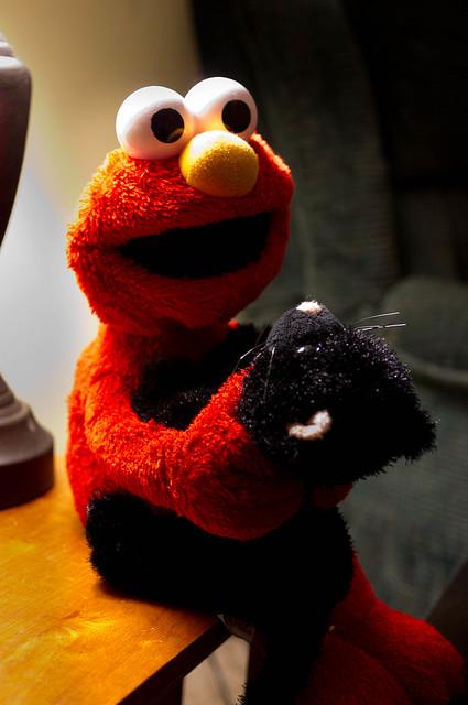 Elmo will help kitty hold her breath!