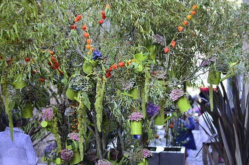 Entre Cours & Jardins