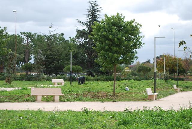 Rutigliano-Al parco nessuno 'si fa' l'erba (3)