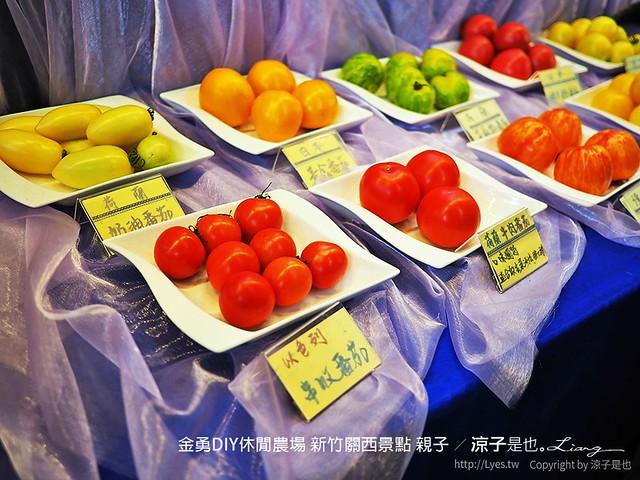 金勇DIY休閒農場 新竹關西景點 親子 3