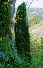Curvalle.Menhir de Vigardel (Profil).