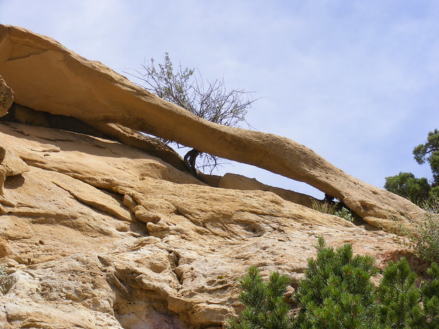 New Mexico Natural Arch NM-536