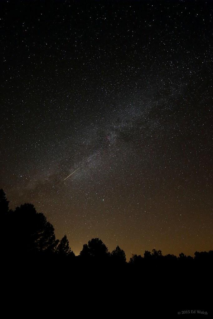 Perseids Meteor 2015