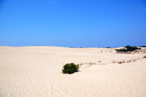 Outer Banks Sand