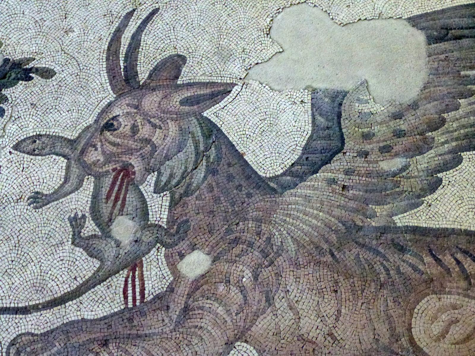 Turquie - jour 24 - Derniers instants à Istanbul - 39 - Musée des mosaïques du Grand Palais de Constantin - Büyük Saray Mozaikleri Müzesi
