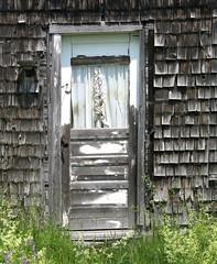 Ruffled curtains, Lamoine, Maine, USA