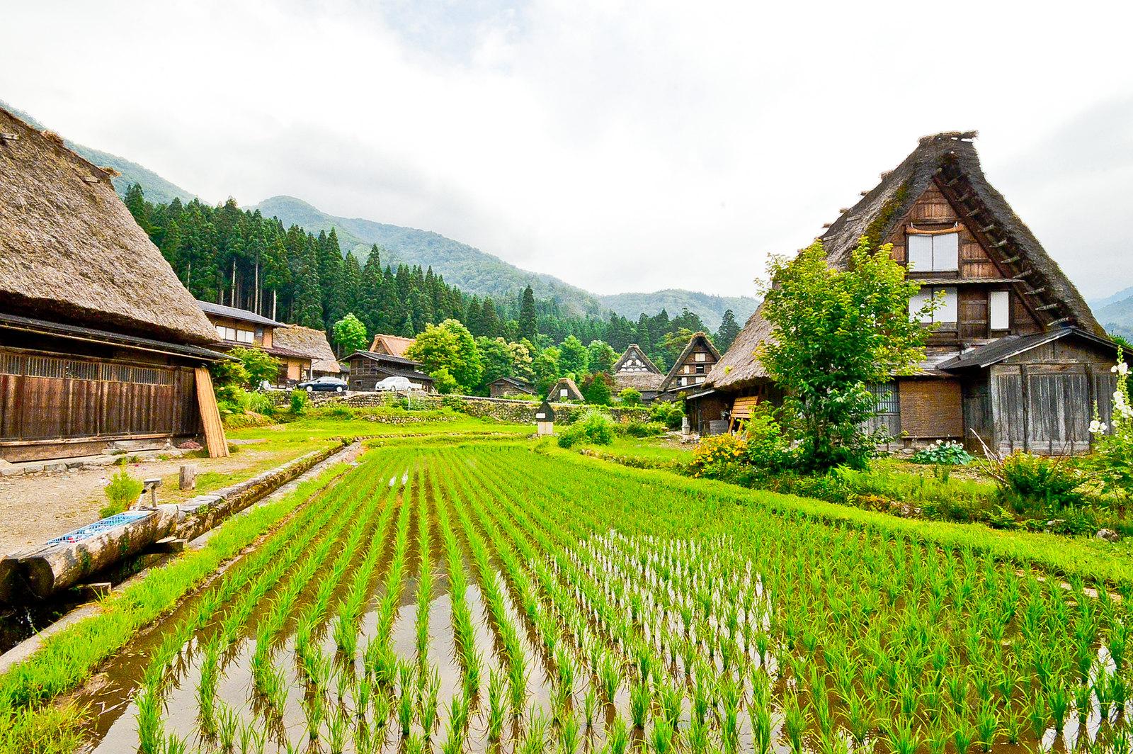 Ogimachi, Shirakawa-gō