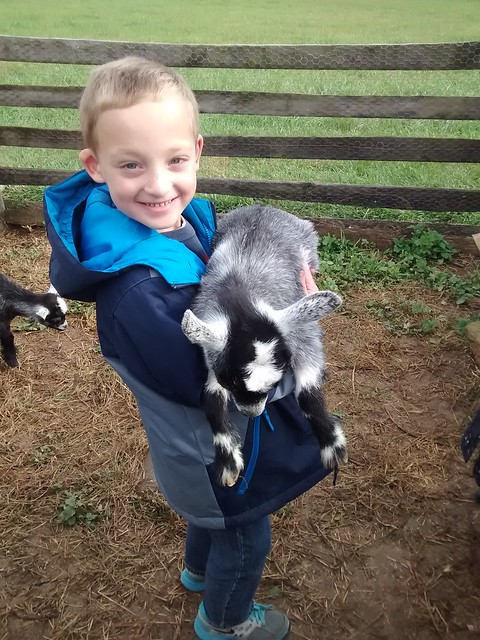 Oct 29 2015 Heritage Farm 1st grade field trip Elden (16)