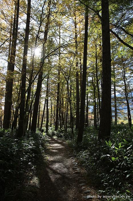 日本北陸合掌村之旅第二天