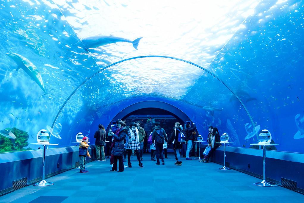 Hakkeijima Sea Paradise