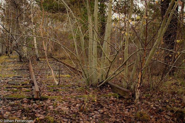End of the line., Nikon D5300, AF-S DX Nikkor 35mm f/1.8G