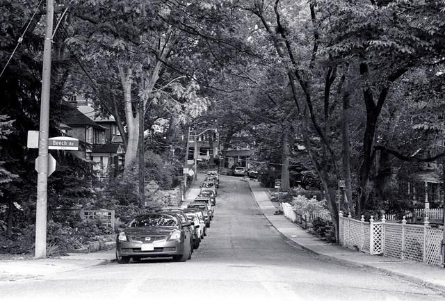 Cedar Ave 1