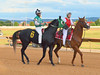 2015-08-20 (22) r1 Christian Heraldo on #6 He's My Champ by JLeeFleenor