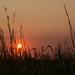 Setting Summer Sun by Rick Smotherman