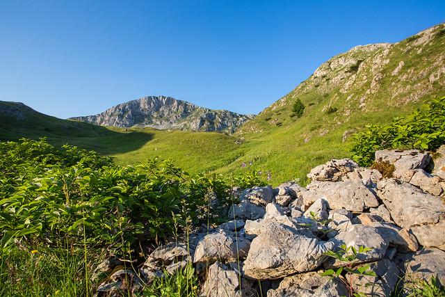 Mt. Zelengora