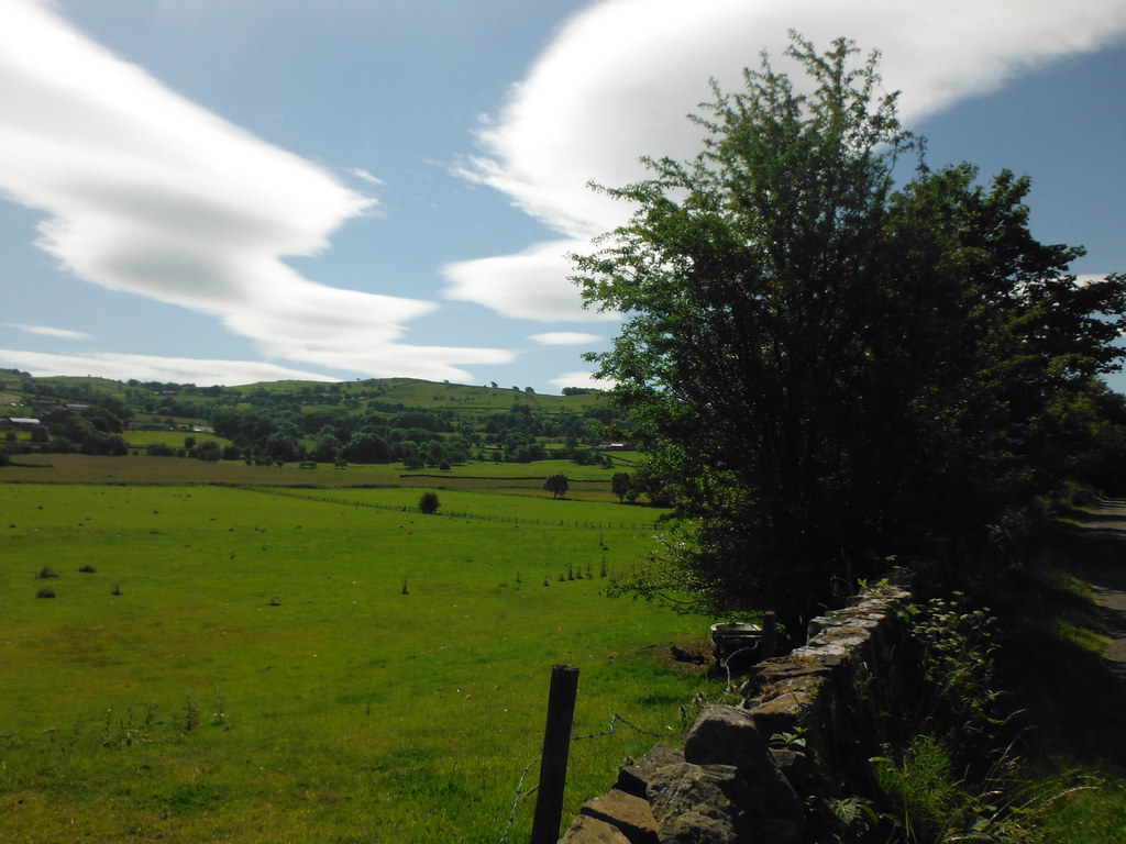 Across the Fields 2