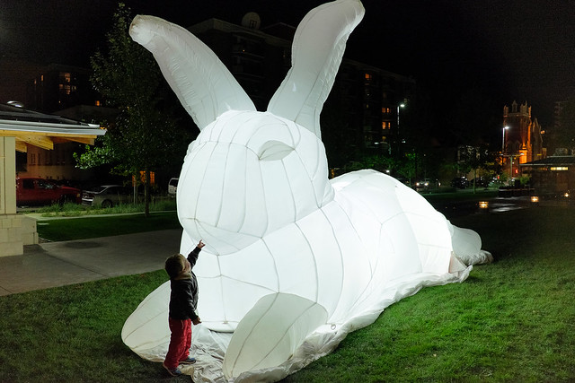 Beakerhead Intrude - White Rabbit-4