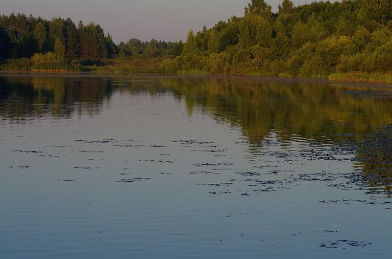 Мельничный пруд, деревня Бугрово, Пушкинские горы, Россия