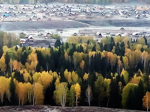 清晨 北疆 禾木村