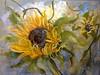 Sunflower (1) by www.sandragraham.co.uk