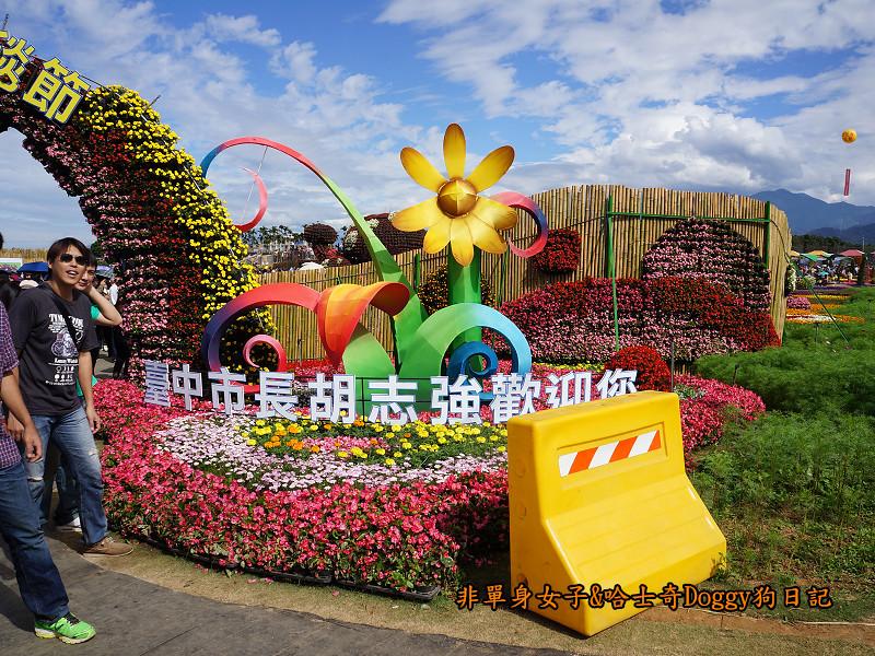 2014臺中新社花海38