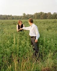 harvest: amy montali